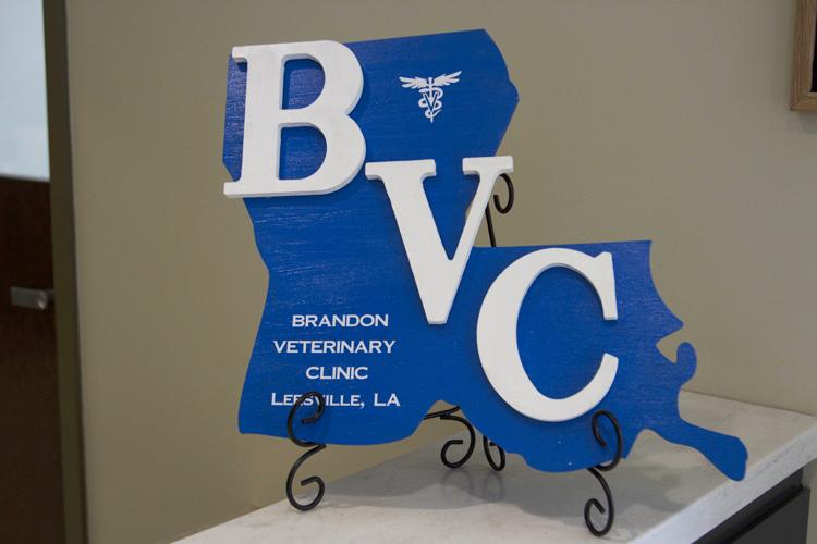 Brandon Veterinary Clinic | Leesville, Louisiana 71446 > Home